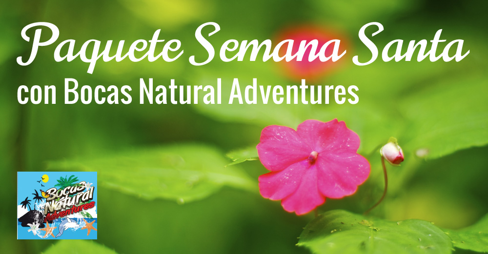 bocas-natural-adventures-semana-santa