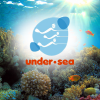 Under sea Panama: Deep Board Tours