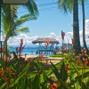 7 Instagram Accounts that will make you want to visit Bocas del Toro