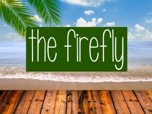 The-Firefly-bed-and-breakfast-bocas-del-toro-bastimentos
