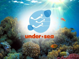 Under-Sea-Panama-Bocas-del-Toro-Tours
