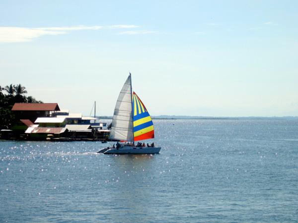 bocas-combo-sailing-tours