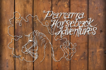 Panama Horseback Adventures