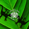 Monkey Tree: Jungle & Sea Nature Retreat