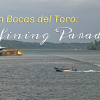 Life in Bocas del Toro: Defining Paradise