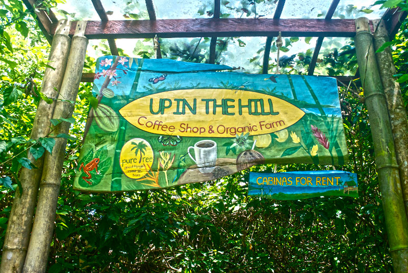 un-in-the-hill-bocas-del-toro-7