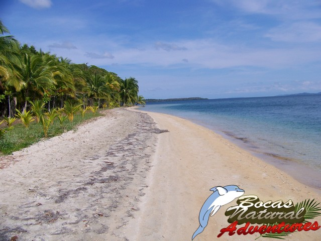bocas-adventure-tours-12
